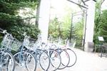 0713_MG_7655-s.JPG